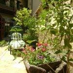 verano-de-2013-y-apartamentos-terraza-2013-agosto-100